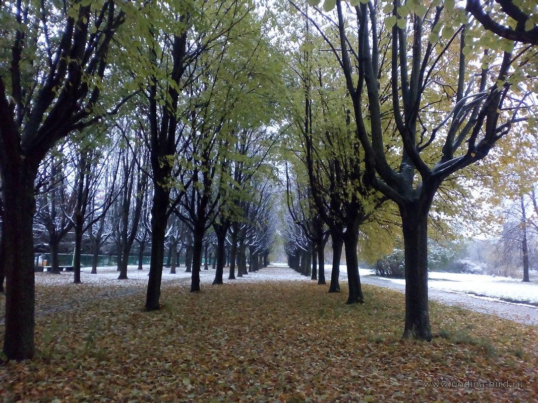 Впереди — зима…